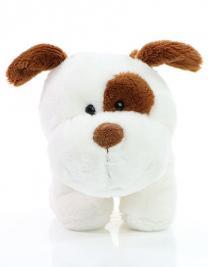 Good nose Terrier Steffi